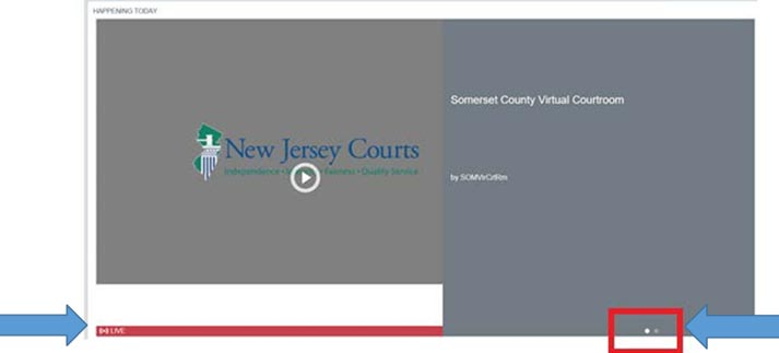 Screenshot of Live Virtual courtroom webpage showing controls